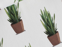 Sanseveria  - French Terry - Gebroken wit